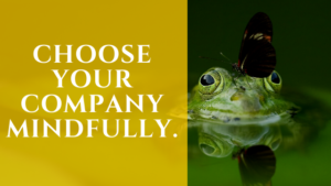 Choose Your Company Mindfully.